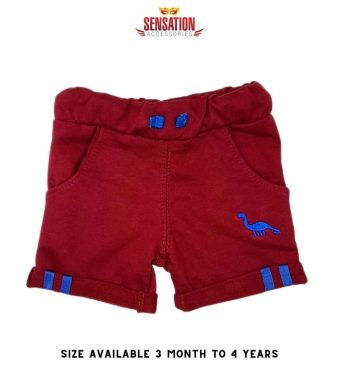 RED DINOSORE EMBRIODED SHORTS FOR BOYS